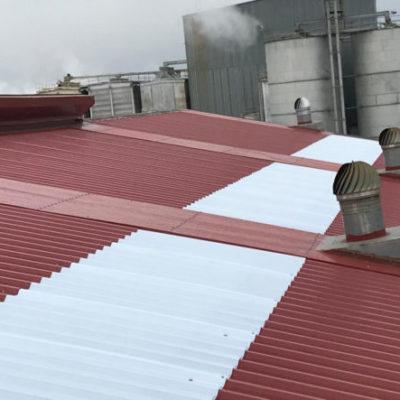 Aislamiento-Cubierta-de-Chapa-Industria-3-770x443